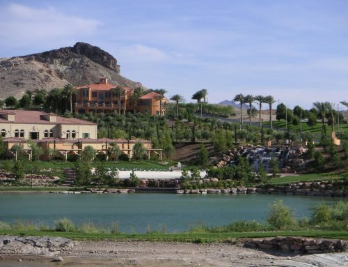 Oasis in the Desert — Lake View Homes